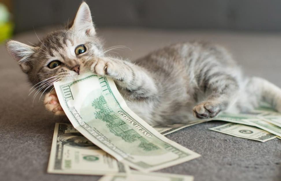 Цікаві факти про гроші і валюту