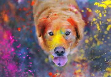 Психологія кольорів і їх значення