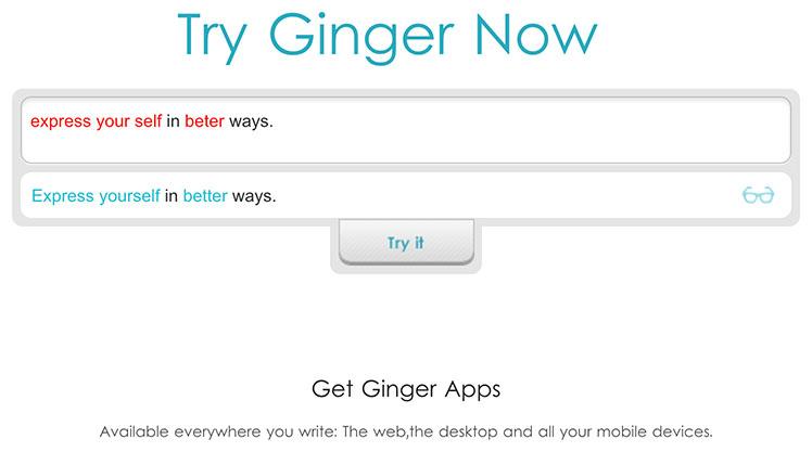 Ginger Grammar Checker