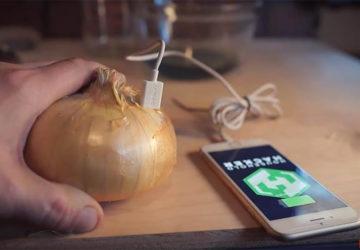 Зарядить телефон от луковицы