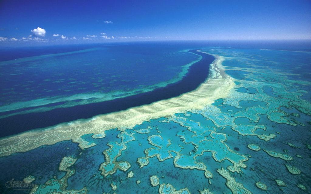 Великий Бар'єрний риф фото