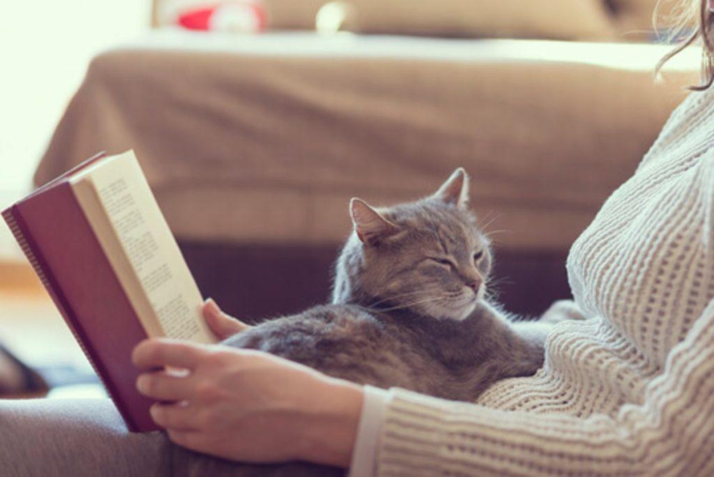 З котом і книжкою