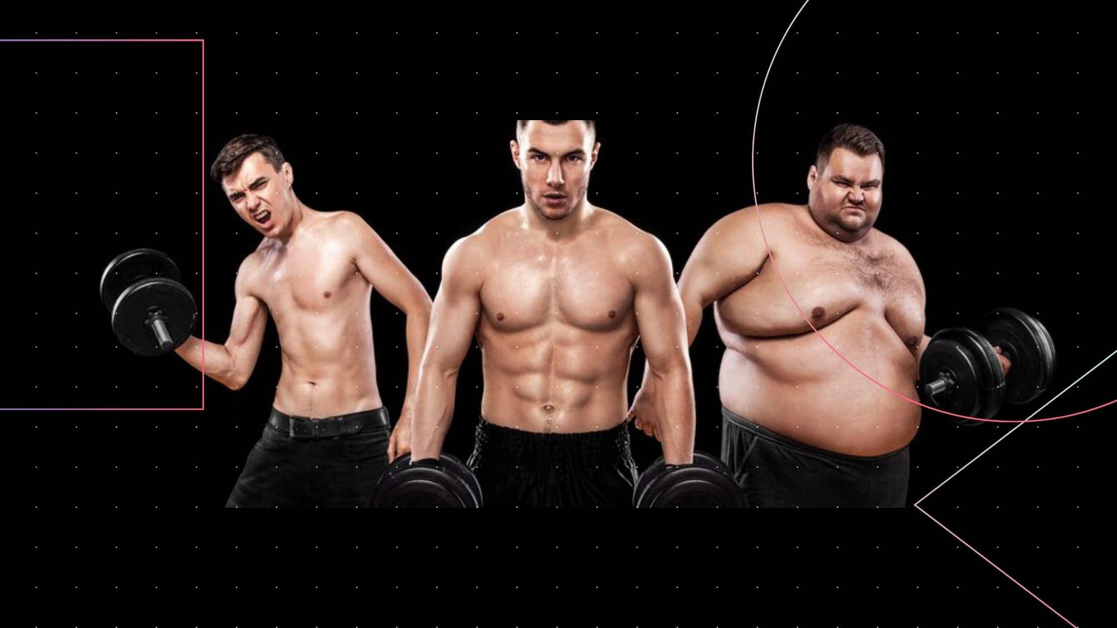 Типи чоловічої тілобудови