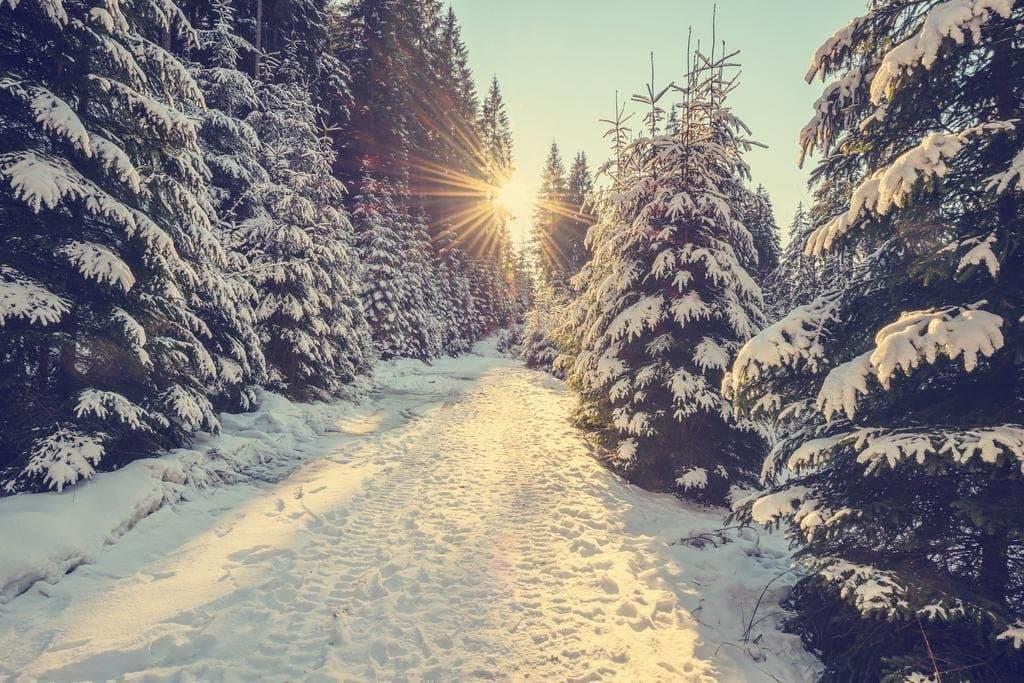 Афоризми і цитати про зиму