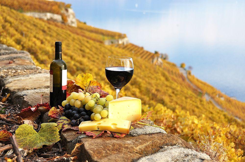 Франція - країна сиру і вина