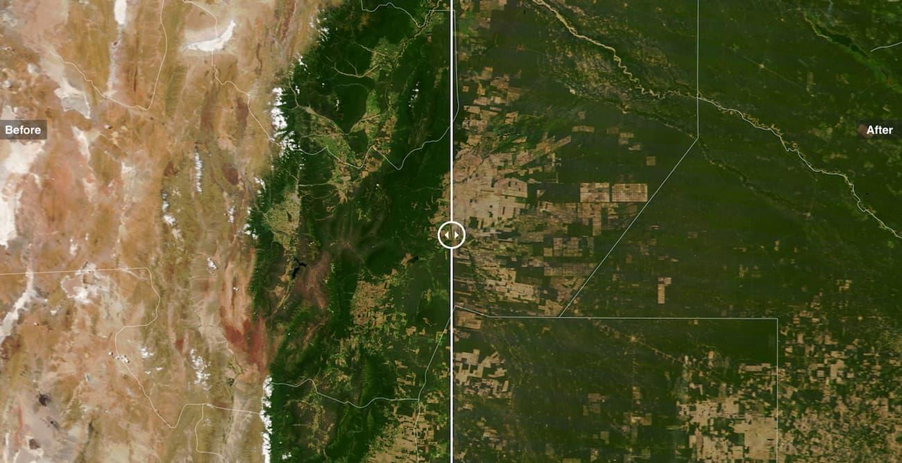 Зменшення площі лісів у Південній Америкаці
