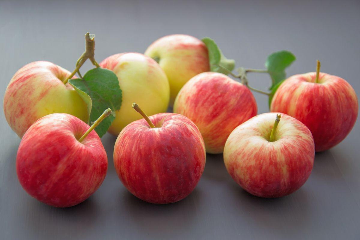 Смертельна доза яблук